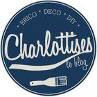 Charlotte de Charlottises Pinterest Account
