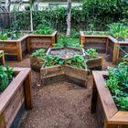 Raised Garden Beds Pinterest Account