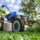 Lawn Related Products Marketplace