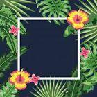 Flores y Plantas instagram Account