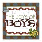 The Joys of Boys Pinterest Account