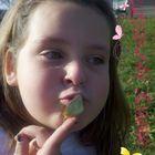 Nicole Kertis Pinterest Account