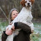 Kaufmann's Puppy Training Pinterest Account