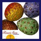 Risen Son Creations's Pinterest Account Avatar
