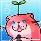 sola 🌙 instagram Account