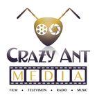 Crazy Ant Media Pinterest Account