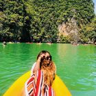 Diywithjoy.com | Food + Travel Pinterest Account