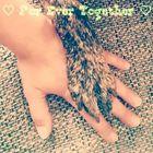 Lo☆cA Pinterest Account