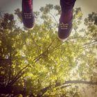 bb instagram Account