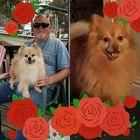 Cheryl Culbertson Pinterest Account