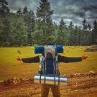 echafi travel Pinterest Account