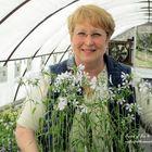 Our Fairfield Home & Garden Pinterest Account