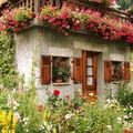 Berceni City-Farmer Pinterest Account