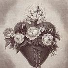 Maria T. Pinterest Account