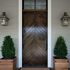lucky plants for front door entrance Pinterest Account
