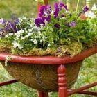 Garten Dekoration instagram Account