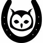 Owl Hill Art Studio Pinterest Account