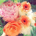 Mariong instagram Account