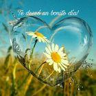 juliosergiofigueroa instagram Account