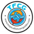 Tropical Fish Care Guides | Fish Tank Ideas | Aquarium Fish  Pinterest Account