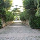 MY Adventure Travel Blog Pinterest Account