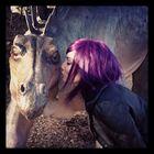 bambi Pinterest Account