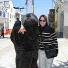 Dr Dee Alaska Vet Animal Planet Animal Tv Vets