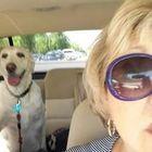 Susie Smith Pinterest Account