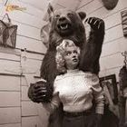 Marilyn and the Bear Pinterest Account