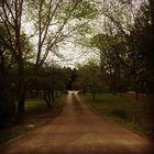 The Suburb Farmhouse  instagram Account