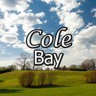 Cole Pet Byte Pinterest Account