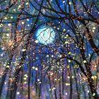 Warm The Heart Of Winter's Pinterest Account Avatar