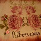 Biborvarazs instagram Account