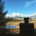 Red Mug Dreams Pinterest Account