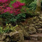 Small Yard Ideas Pinterest Account
