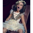 segeye instagram Account