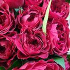 Flowerstagram Pinterest Account