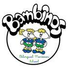 Bambinos B Montessori Pinterest Account