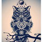 Night thinker Day dreamer Pinterest Account