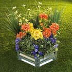 ggardenflowers Pinterest Account