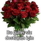 Yesim Esen Pinterest Account