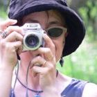Martha Aleo Pinterest Account