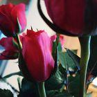 Athina Linardou Pinterest Account