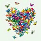 Aminah R Pinterest Account