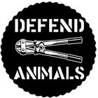 DefendAnimals.com Pinterest Account