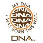My DNA Pinterest Account