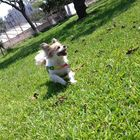 Manchita Manchita instagram Account