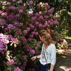 Katlin Bryant Pinterest Account