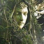 Sarah Foster's Pinterest Account Avatar