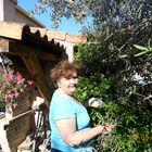 CHRISTINE SALVAGGIO Pinterest Account